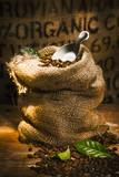 Fototapety Fresh roasted organic coffee beans