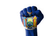 Fist painted in colors of us state of new york flag