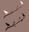 Birds Decal Artwork