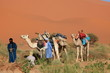 Nomaden der Sahara