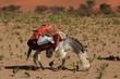 Nomaden in der Sahara