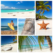 Caribbean nature collage