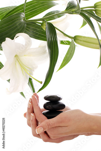 Spa hands over white background