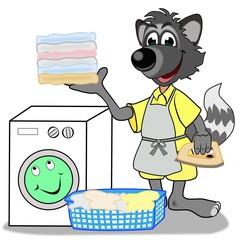 Waschbär in der Textilpflege