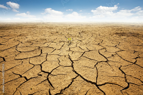 Dryed land with cracked ground. Desert - 40273676