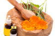 Alternative Medicine - Calendula Officinalis