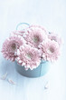 Pink Gerbera Daisies in a Pot