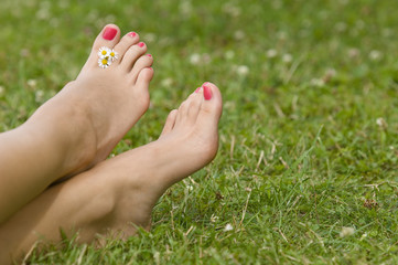 Woman's bare foot in grass with daisies between toes, close-up