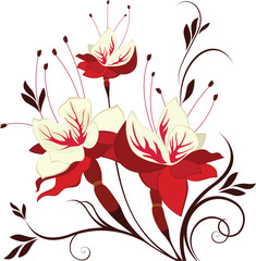 vector flower fuchsia, decorative composition, bunch of flowers