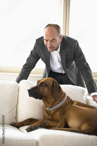 Businessman looking at dog sitting on sofa