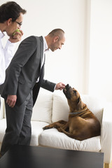 Businessman feeding dog sitting on sofa