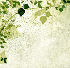 Vintage leaves and nature background