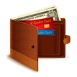 Credit Card and Dollar Note in Wallet