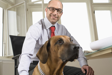 Businessman sitting on chair with dog in office, portrait