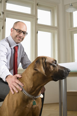 Businessman sitting on chair with dog in office, smiling