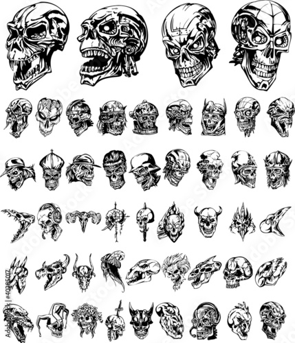 Monster skulls collection