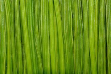 moringa-drumstick
