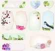 set of cards with precious nature decorations