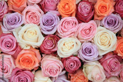 fototapete rose rosen blume heirat pixteria. Black Bedroom Furniture Sets. Home Design Ideas
