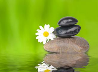 Stillleben mit Steinen und Blüte