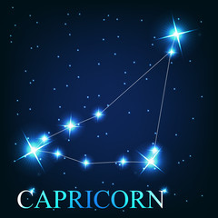 vector of the capricorn zodiac sign of the beautiful bright star