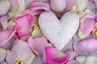 White maple heart with rose petals