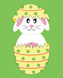 Bunny Rabbit in Easter Egg