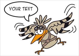 oiseau pigeon vol personnage message