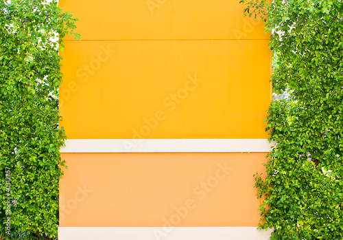 orange wall between bush