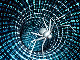 Internet bug