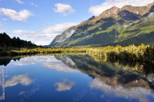 Mirror lakes, Milford Sound (New Zealand)