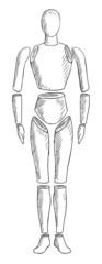 abstract human body vector