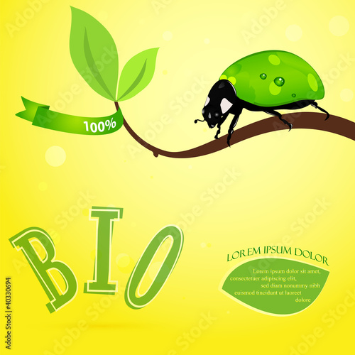 Bio concept with green ladybird and leaf.