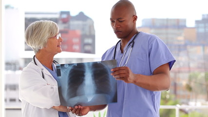 Smiling doctors examining a chest x-ray