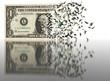 1 USD dissapearing