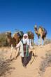 Bédouin et ses dromadaires dans le désert