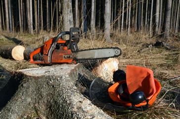 Chain saw, helmet on tree stump