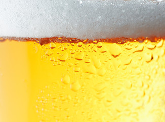 Close-up Picture of a beer.