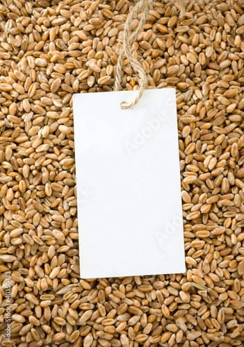 wheat and price tag