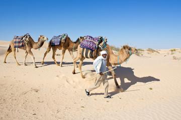 Caravane - Sahara #2