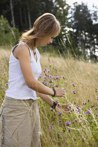 Mid adult woman plucking flowers