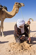 Sahara : Recherche de roses des sables