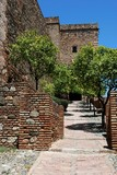 Torre del Cristo, Alcazaba de Malaga, Spain © Arena Photo UK