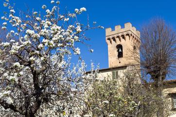 Toscana: Pieve di S. Pietro a Mercato a Montespertoli