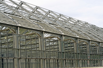 steel and glass greenhouse for growing plants
