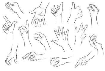 Hände, diverse