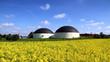 Biogasanlage und Rapsfeld - 40377072