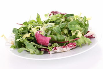 isolated plate of salad