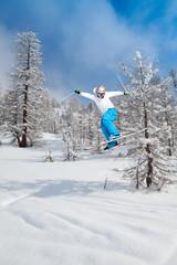 paesaggio invernale con sciatore