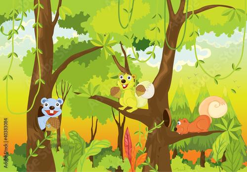 squirrels in the jungle